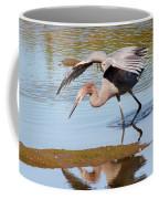Birds Of The World Coffee Mug