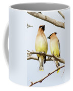 Birds Of The World Coffee Mug