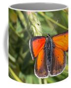 18 Balkan Copper Butterfly Coffee Mug