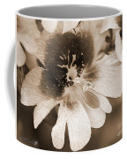 Schizanthus From The Hit Parade Mix Coffee Mug