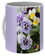 Viola Tricolor Heartsease Coffee Mug