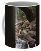 1917 Carriage Road Bridge Of Acadia Coffee Mug