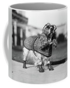 1930s Cocker Spaniel Wearing Glasses Coffee Mug