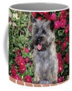 1990s Cairn Terrier Dog Standing Coffee Mug