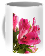 Alstroemeria Flowers Against White Coffee Mug