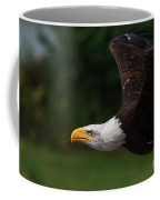 American Bald Eagle In Flight Coffee Mug