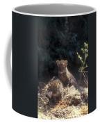 Arabian Leopard Panthera Pardus Coffee Mug