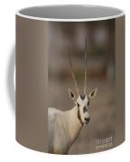 Arabian Oryx Oryx Leucoryx Coffee Mug