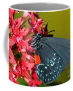 Atala Butterfly Coffee Mug