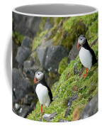 Atlantic Puffin, Fratercula Arctica Coffee Mug