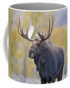 Autumn Bull Moose IIi Coffee Mug