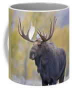 Autumn Bull Moose IIi Coffee Mug