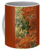 autumn colours in Bavaria Coffee Mug