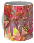 Autumnal Liquidambar Leaves Coffee Mug