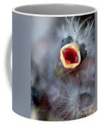 Baby Bird Coffee Mug by Henrik Lehnerer