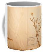 Beautiful Dried Vintage Flowers Coffee Mug