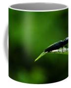 Beetle At Sunrise Coffee Mug
