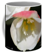 Begonia Named Nonstop Apple Blossom Coffee Mug
