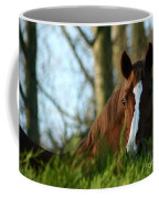 Behind The Fence Coffee Mug