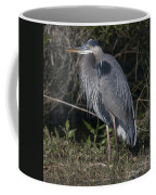 Birds Of The Lowcountry Coffee Mug