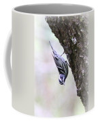 Black And White Warbler Coffee Mug