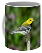 Black Throated Green Warbler Coffee Mug