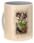 Bloodroot Wildflower - Sanguinaria Canadensis Coffee Mug
