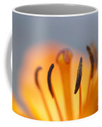 Bloom Of Lily Coffee Mug