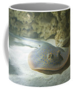 Blue Spotted Fantail Ray  Coffee Mug