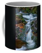 Bodefall Coffee Mug