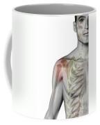 Bones Of The Shoulder Coffee Mug