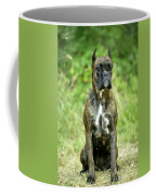 Boxer Dog Coffee Mug