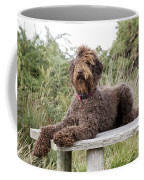 Brown Labradoodle Coffee Mug