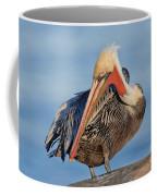 Brown Pelican Preening Coffee Mug