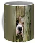 Can I Come Over And Play Coffee Mug