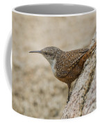 Canyon Wren Coffee Mug