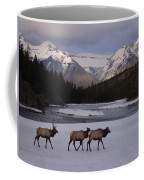 Elk Crossing, Banff National Park, Alberta Coffee Mug