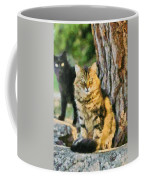 Cats In Hydra Island Coffee Mug