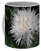 Centaurea Named The Bride Coffee Mug