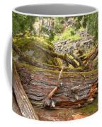 Cheakamus Rainforest Debris Coffee Mug