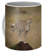 Cheetah On Termite Mound Coffee Mug