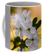 Cherry Flowers Coffee Mug