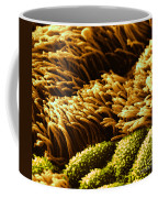 Cilia In Lung, Sem Coffee Mug