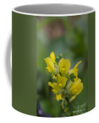 Clustered Broom Coffee Mug
