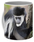 Colobus Monkey Coffee Mug