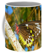Common Birdwing Butterfly Coffee Mug