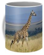 Common Giraffe Coffee Mug