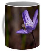 Common Hepatica Coffee Mug
