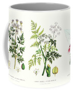 Common Poisonous Plants Coffee Mug by English School