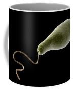 Conceptual Image Of Euglena Coffee Mug by Stocktrek Images